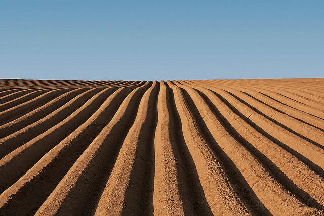 IWE-Dossier: Zerstört die Landwirtschaft das Klima?