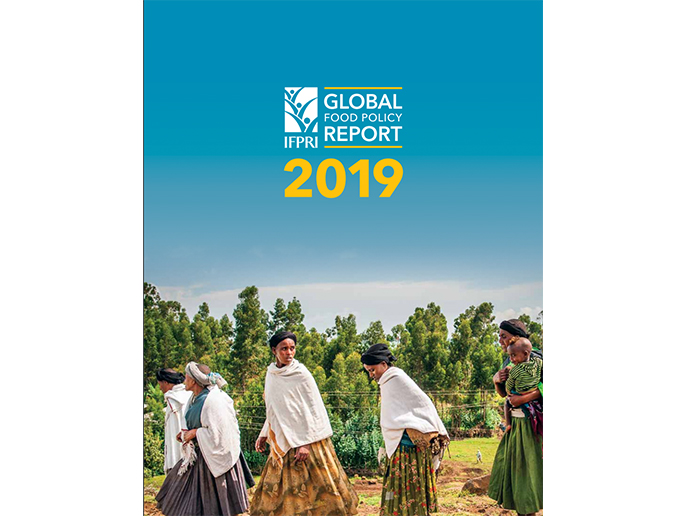 Global food policy report 2019