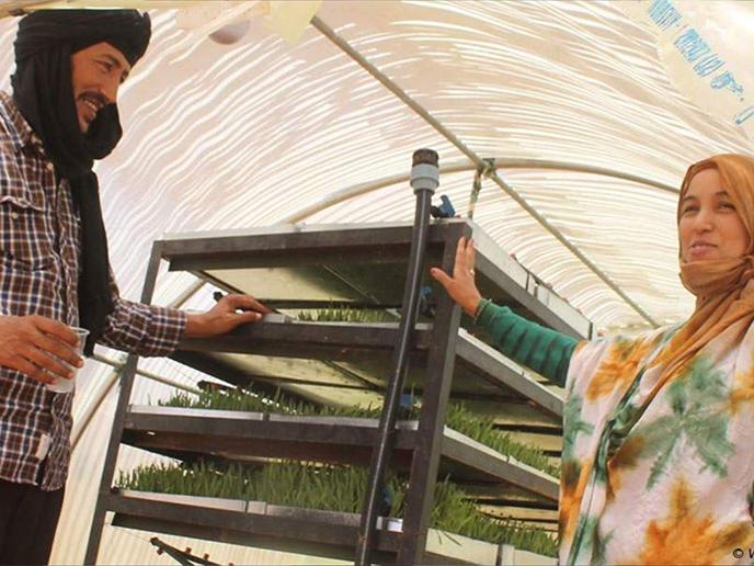 Crowdfunding: GreenUp Sahara