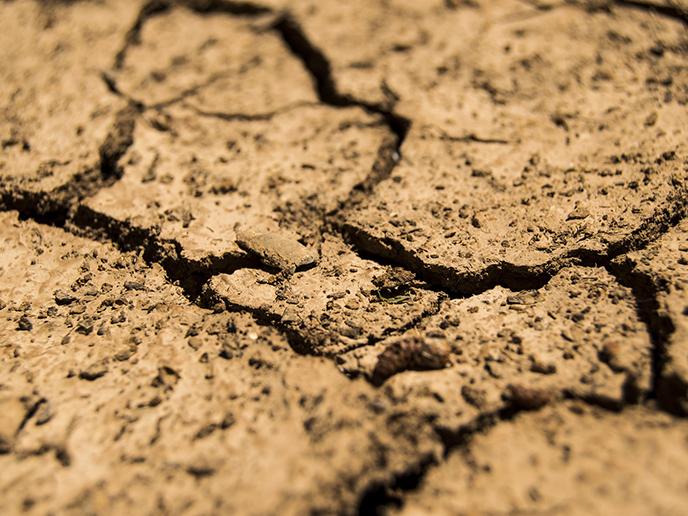 Risiko-Atlas: Extreme Wasserknappheit in 17 Ländern
