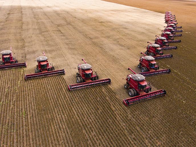 Arglistige Täuschung: Das Klimaschutzprogramm der Landwirtschaftsministerin