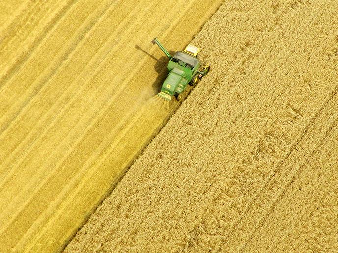 100 Milliarden, die wahren Kosten der deutschen Landwirtschaft